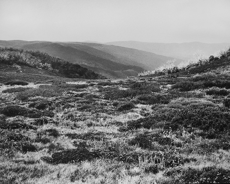 Bogong High Plains, Alpine National Park (4582/16)