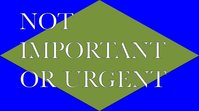 48. NOT IMPORTANT OR URGENT, 2015 AGS.ppsx