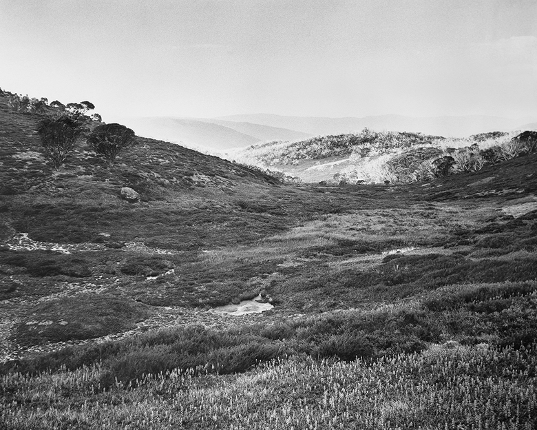 Bogong High Plains, Alpine National Park (4582/9)